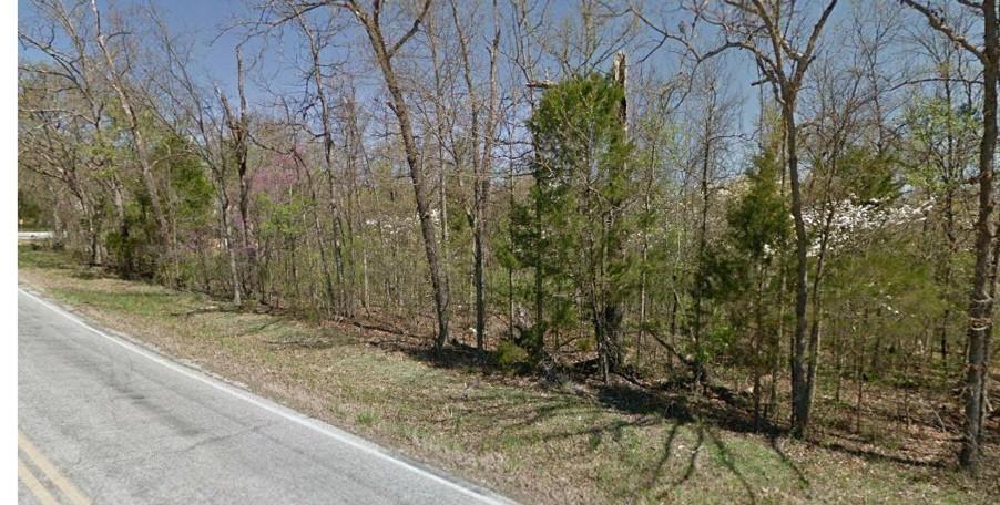 Lot 2 Highway 176 Merriam Woods, MO 65740