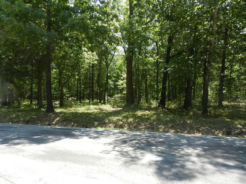 Lot 46 Millwood Drive Reeds Spring, MO 65737