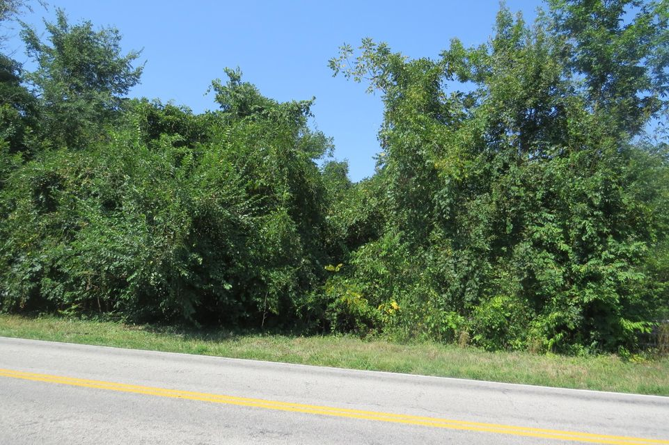 739 State Hwy P Clever, MO 65631