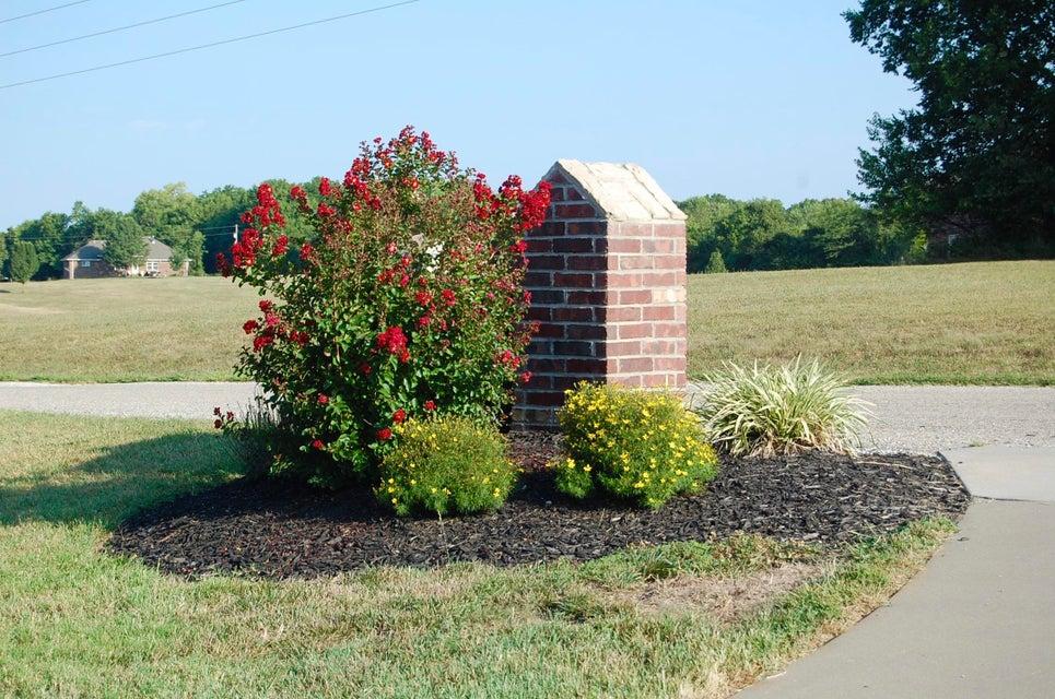 166 View High Drive Ozark, MO 65721