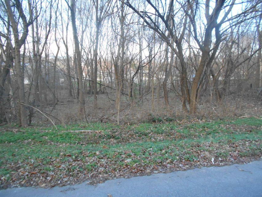 Lots and Land for sale – Lot 3 West Northview   Ash Grove, MO
