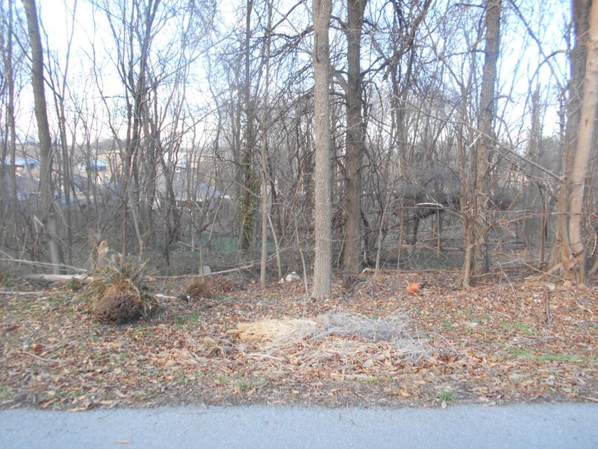 Lots and Land for sale – Lot 1 West Northview   Ash Grove, MO