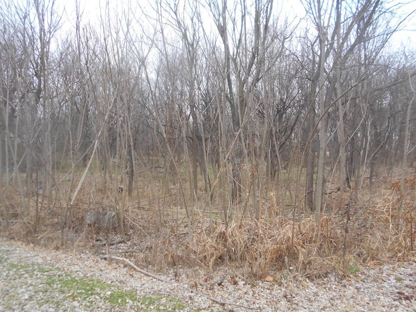 Lots and Land for sale – Lots 15-17 West Northview Ter   Ash Grove, MO