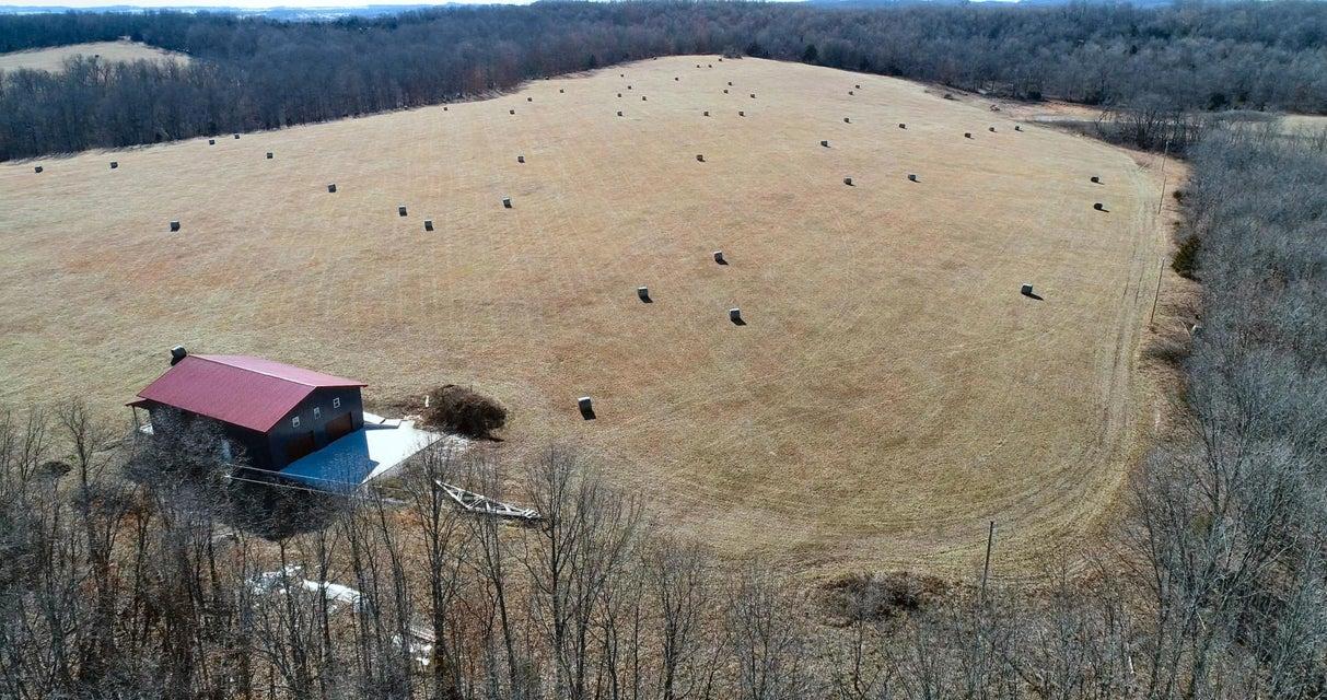 Farm for sale – 596  Little Creek   Mountain Grove, MO