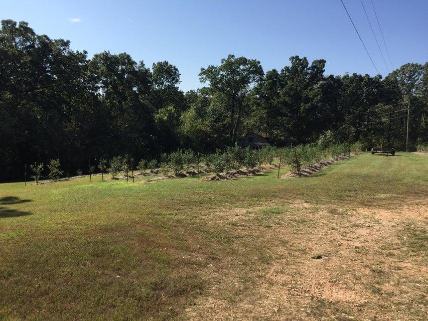 Farm for sale – 3389  Private Rd 2212   Washburn, MO