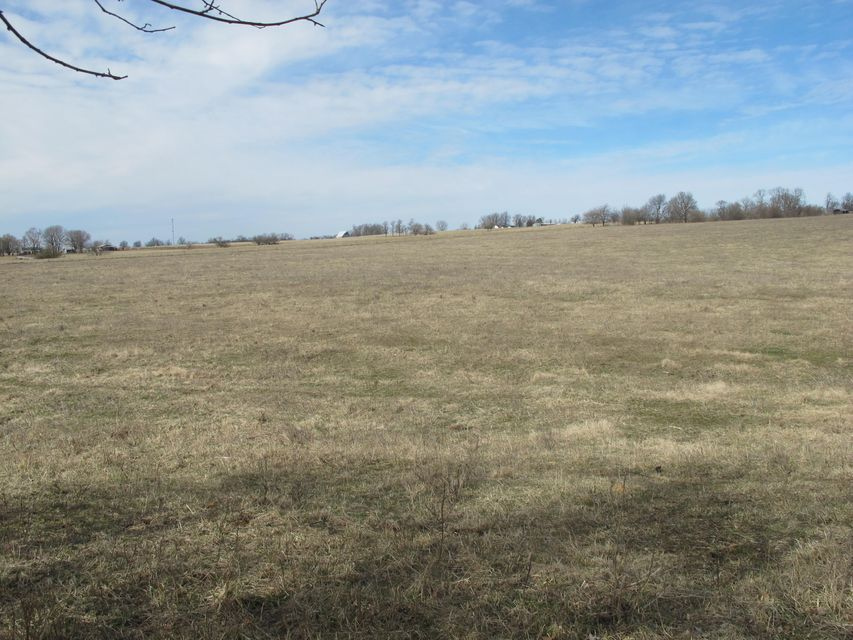 Lots and Land for sale – 000 West US Highway 60   Ash Grove, MO