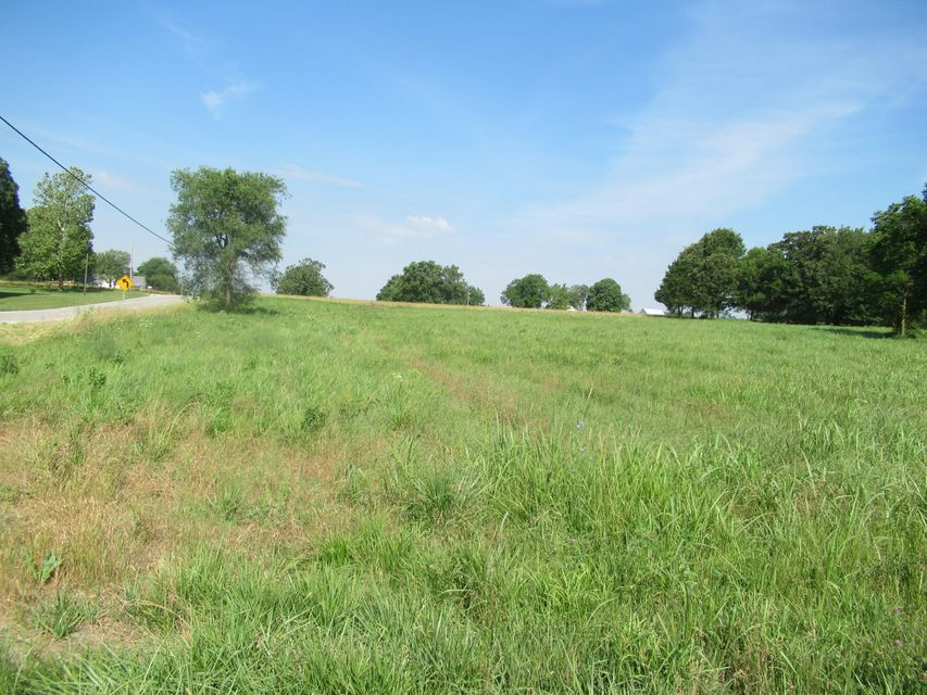 Lots and Land for sale – 239 South Maple   Dadeville, MO