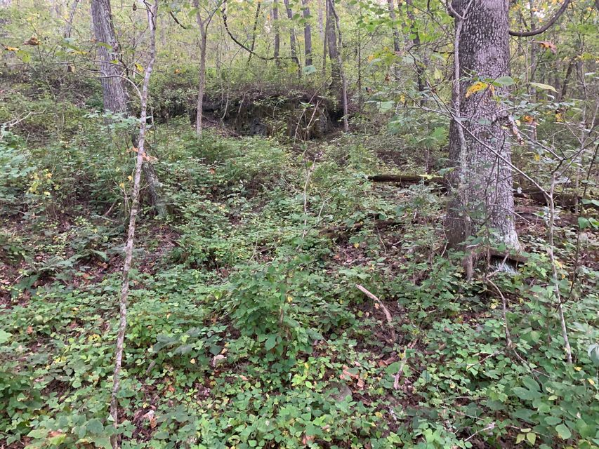 Lots and Land for sale – 000  County Road 2120   Edgar Springs, MO
