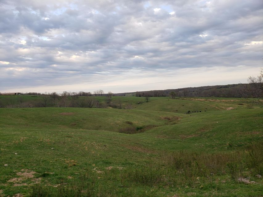 Farm for sale – 4531-A  Hwy Y   Hartville, MO