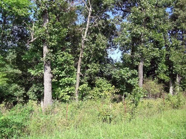 Farm/Ranch/Land for sale – Lots 4 & 5  Marshall   Marshfield, MO