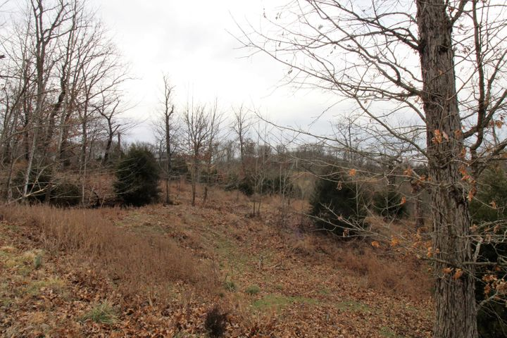 Lot 1 Woods Fork Road, Highlandville, MO 65669