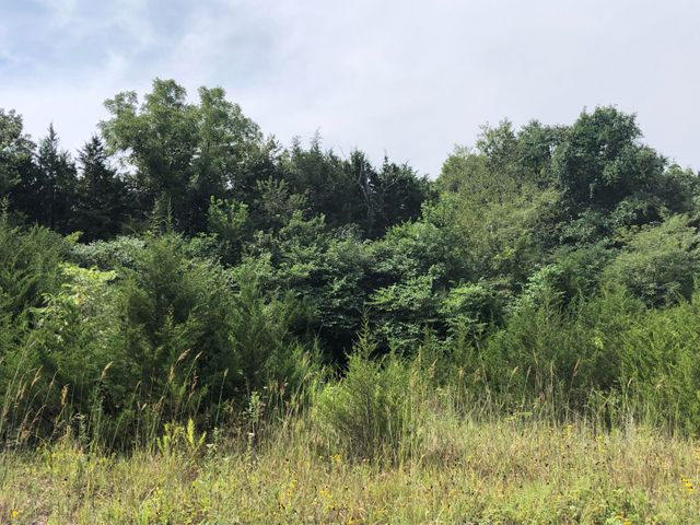 Farm/Ranch/Land for sale –  Humansville,