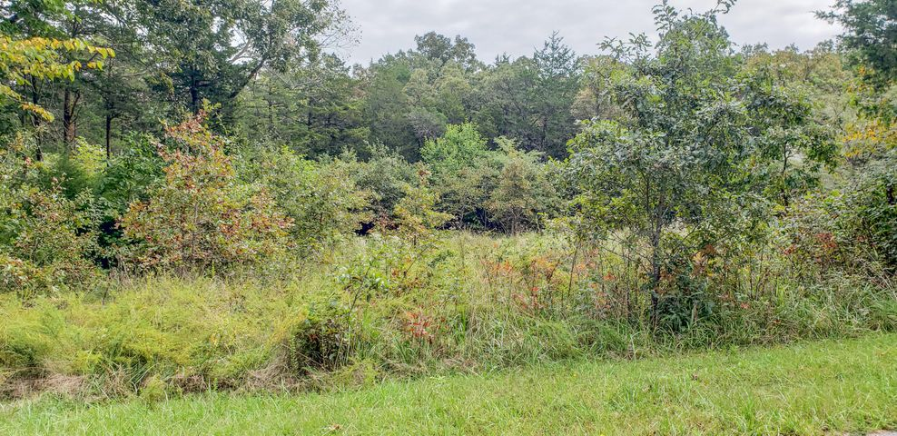 Farm/Ranch/Land for sale – Lot 19  New Hermitage Dr.   Hermitage, MO