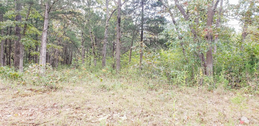 Farm/Ranch/Land for sale – Lot 17  New Hermitage Dr.   Hermitage, MO