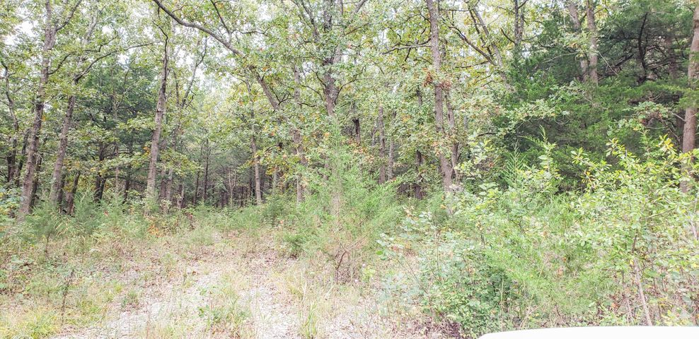 Farm/Ranch/Land for sale – Lot 10  New Hermitage Dr.   Hermitage, MO