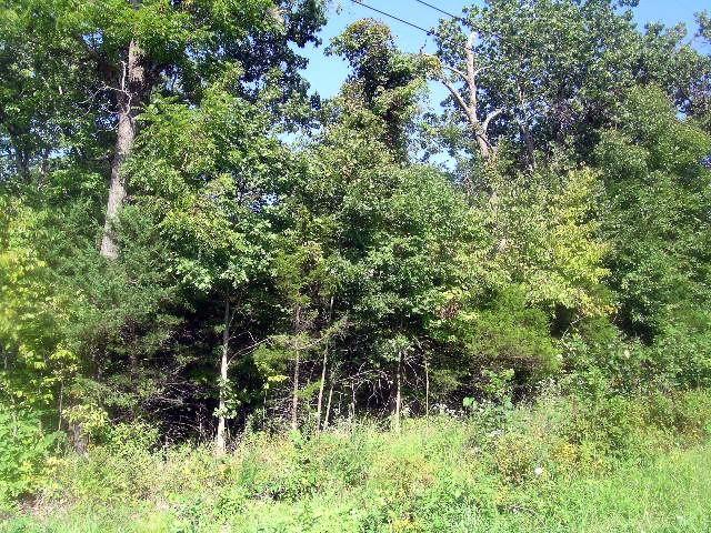 Farm/Ranch/Land for sale – 000  Marshall   Marshfield, MO