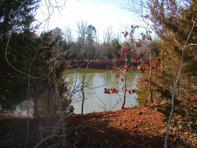 6060 State Route W, Peace Valley, MO 65788