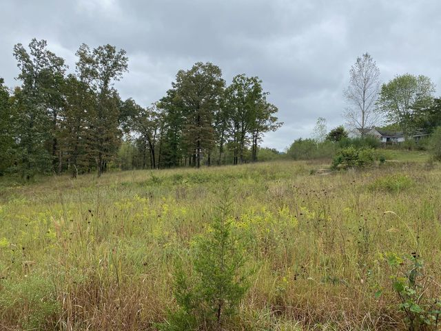 Tbd Pine Top Road, Kirbyville, MO 65679