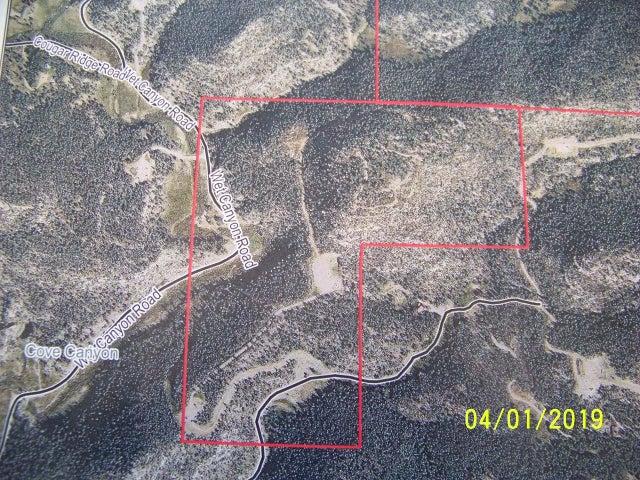 03-33-67 Wet Canyon - 120 acres, Weston, CO 81091