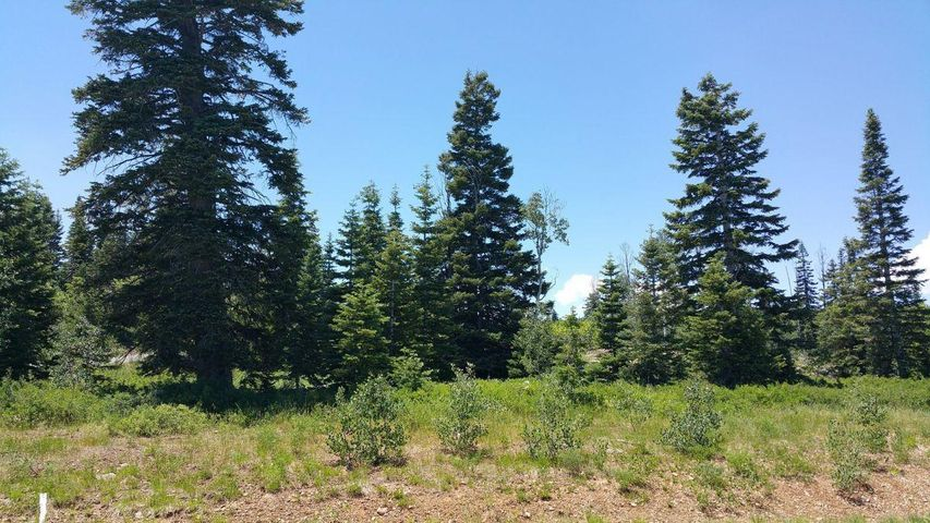 Whispering Pines Lot 53, Virgin UT 84779