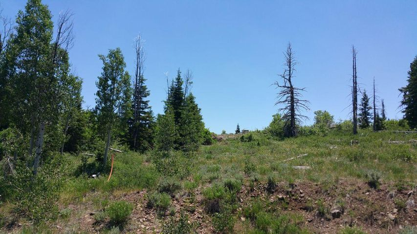 Whispering Pines Lot 57, Virgin UT 84779