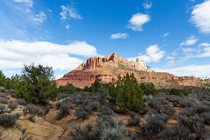 2495 Navajo Circle, Springdale UT 84767
