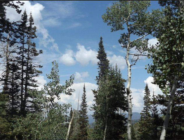 449 W Ski View, Brian Head UT 84719