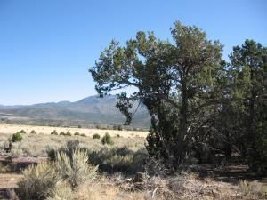 Lot 21 N Butch Cassidy Trail, Central UT 84722