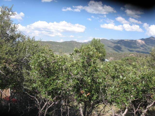 29 Hillside Cir, Pine Valley UT 84781
