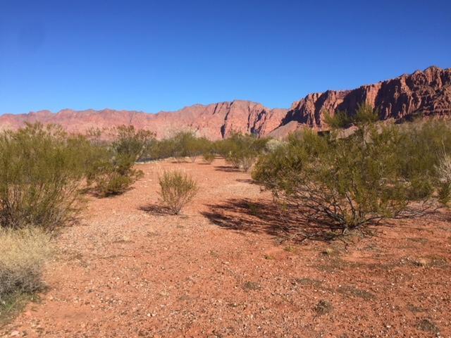 539 N Bur Sage Trail, Ivins UT 84738