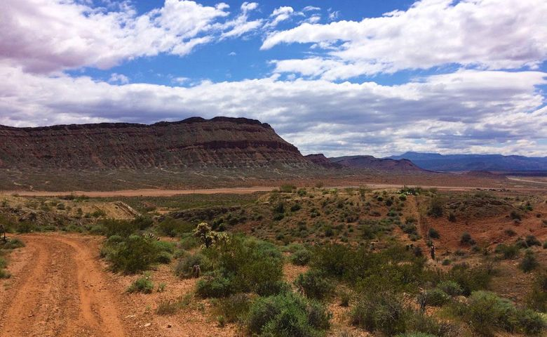30 Acres, Washington UT 84780