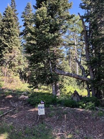 Whispering Pines Lot77, Virgin UT 84779