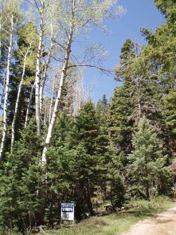 5415 W Deer Trail, Duck Creek UT 84762