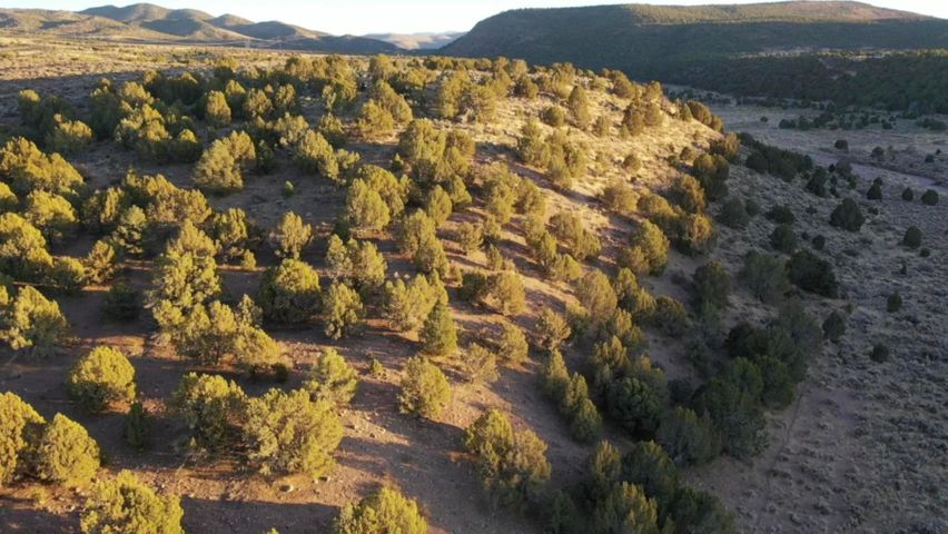 40 Ac N Holt Canyon Rd, Enterprise UT 84725