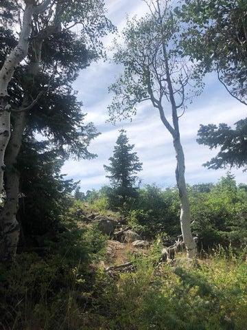Whispering Pines Lot 22, Virgin UT 84779