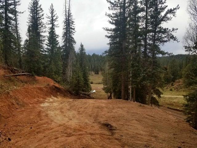 3200 E Spruce Dr, Duck Creek UT 84762