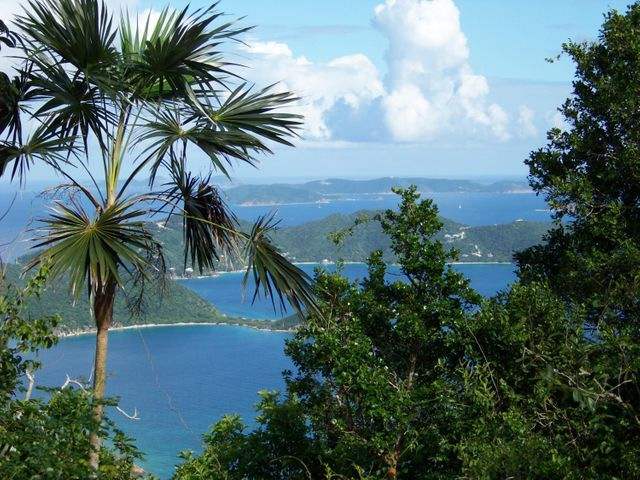 Close to shopping & restaurants in Coral Bay