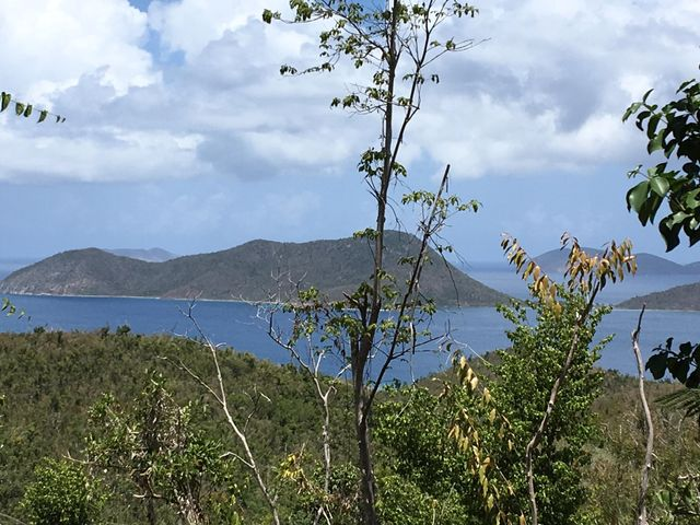 Pristine views of the BVI's!
