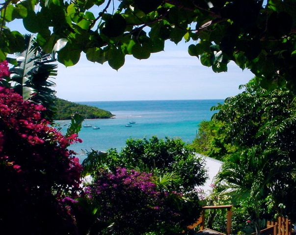 Fish Bay View from Gecko House