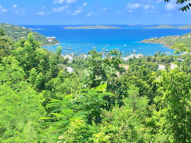 Perfect framed views of Great Cruz Bay from this downhill build
