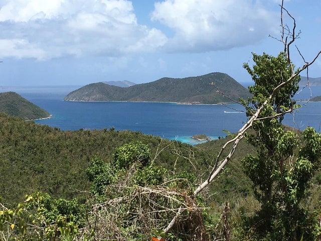 Views of Waterlemon Cay & the BVI's