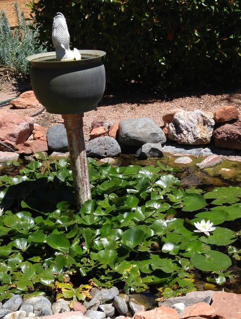 10  Cathedral Rock Drive Sedona, AZ 86351
