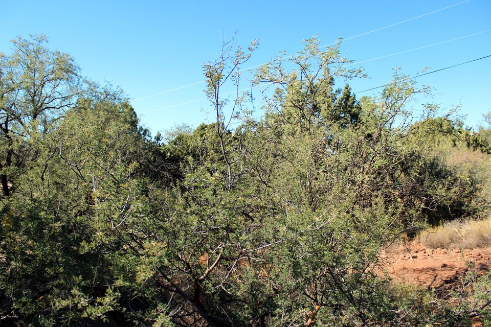 45 E Tonto Rim Sedona, AZ 86351
