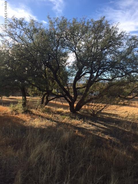 430 S Page Springs Cornville, AZ 86325