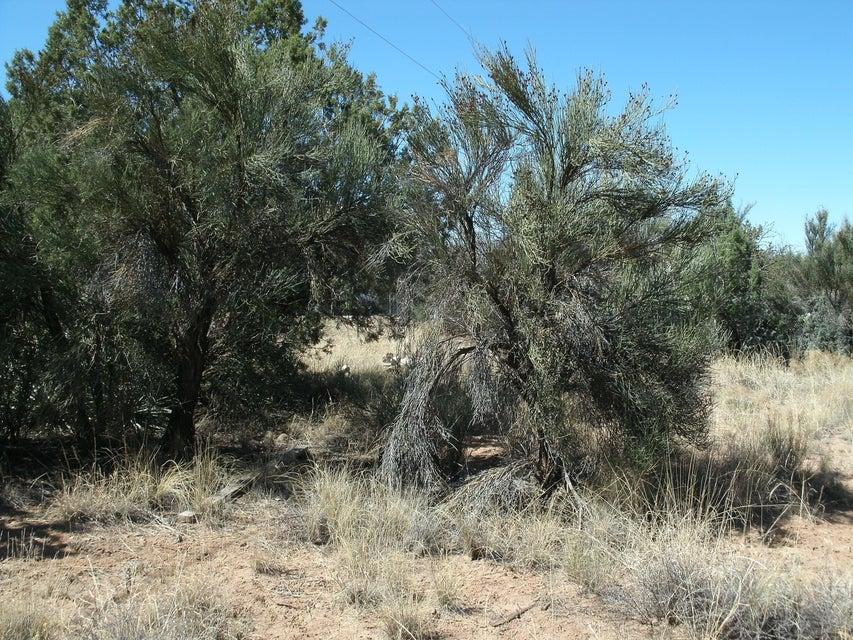 4875 E Valley Rimrock, AZ 86335