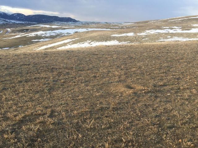 Parcel 3S Southlodge Trail, Buffalo, WY 82834