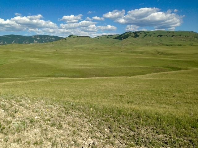 Lot 8 TBD, Buffalo, WY 82834