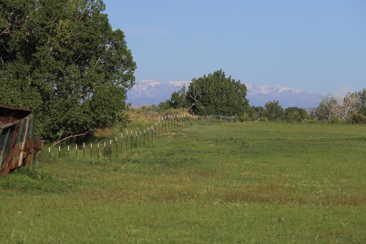 Mountain view from Quarter Circle Ranch