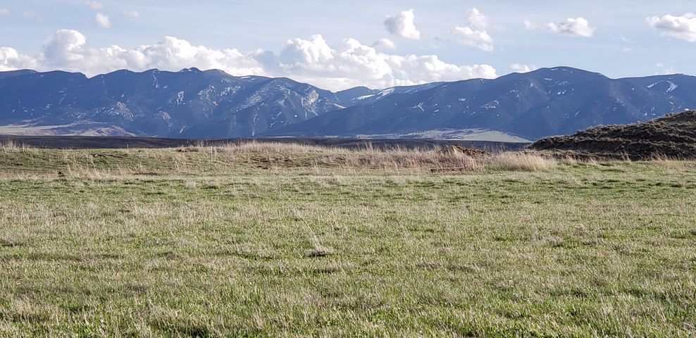 Lot 14 TR Lane, Ranchester, WY 82839