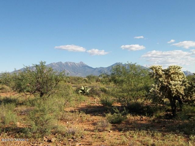 677 E Canyon Rock Road, 45, Green Valley, AZ 85614